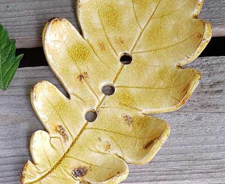 Mydelniczka liść