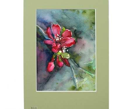 Kwiat pigwowca w powiększeniu - akwarela