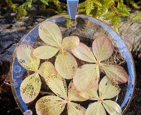 Okrągły wisiorek z kwiatami hortensji