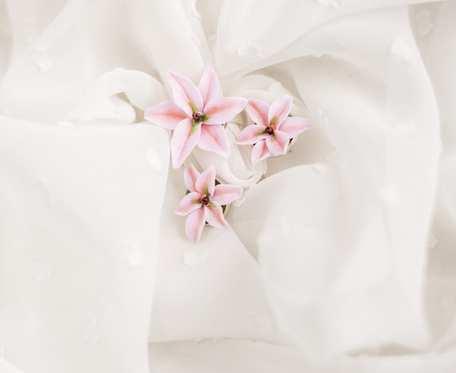 Komplet lillie