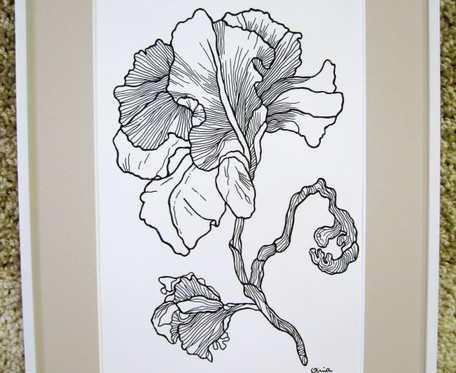 IRYS - grafika - czarno-biała
